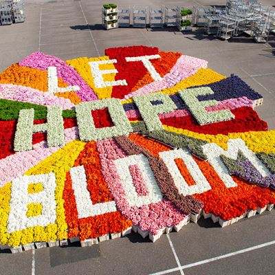 Flowers With a Message: Floral Industry Unites to Spread Hope Amid COVID-19