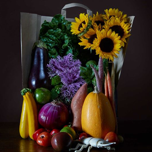 Still life arrangement featuring ornamental kale, sunflowers and vegetables.