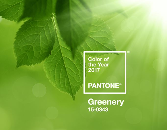 <p>Pantone&rsquo;s Greenery Growing on Consumers</p>