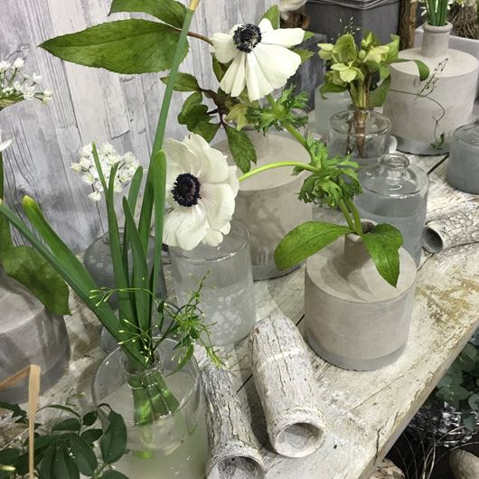 Anemones, Narcissus, Helleborus combine in a monochromatic tablescape.  Photo: IPM Essen, Germany