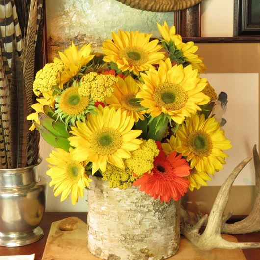 Sunflowers and Gerbera in a birtch bark cylinder.Photo: Nature's Flowers