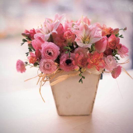 Classic pink Ranunculus and Amaryllis flowers evoke thoughts of spring.
