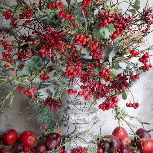 Mums, Eucalyptus and 'Prunifolia' berries showcase the best of seasonal red and green hues.